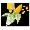corn-v-web